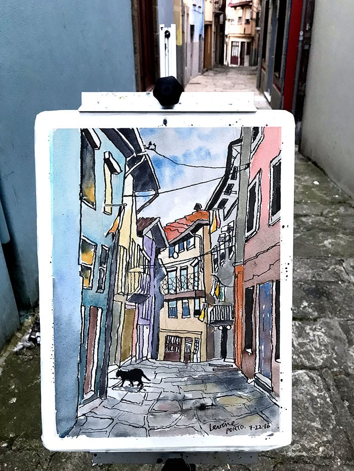 watercolor Oporto cat in alleyway