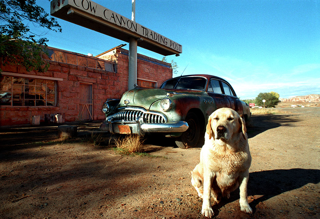 1949 Buick Super at Cow Canyon Trading Post