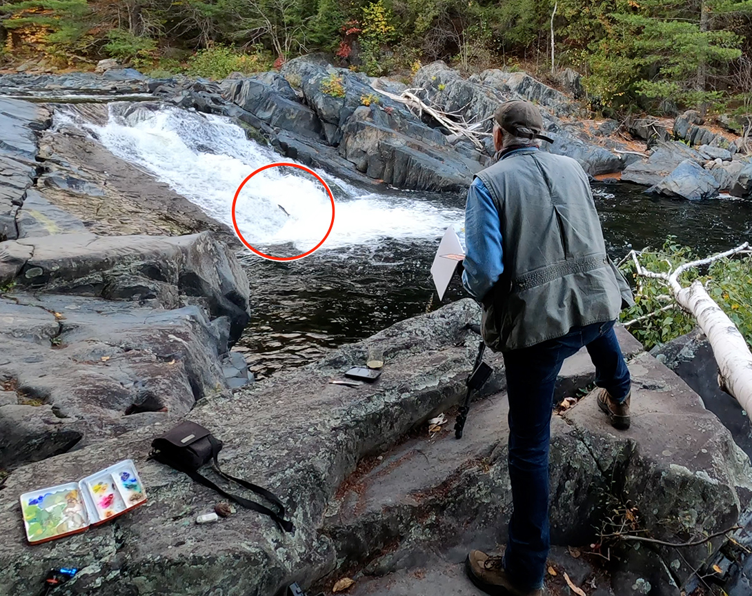 plein air painting waterfall jumping salmon