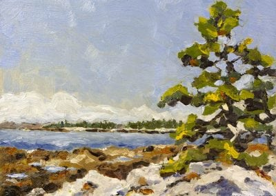 acadia national park, maine, seawall, Jeffrey M Levine, ocean, beach, pine trees